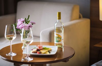 hotel-zenit-balaton-superior-vonyarcvashegy-home-gallery-13.jpg