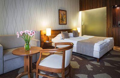 hotel-zenit-balaton-superior-vonyarcvashegy-home-gallery-11.jpg